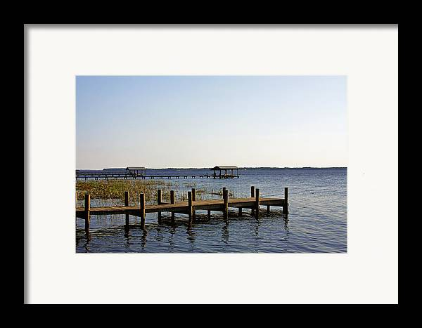 St Framed Print featuring the photograph St Johns River Florida - Walk This Way by Christine Till