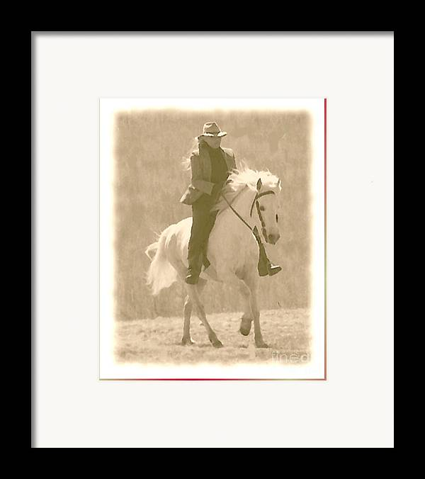 Horse Framed Print featuring the photograph Stallion Strides by Patricia Keller