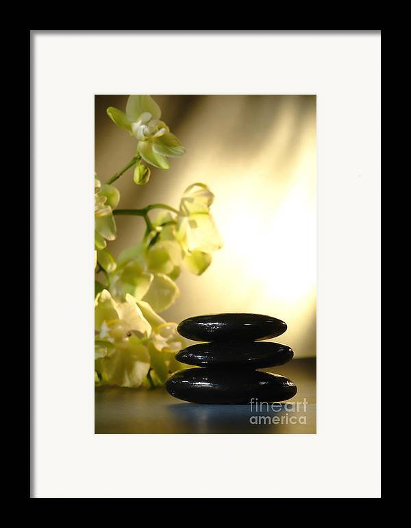 Orchid Framed Print featuring the photograph Stone Cairn And Orchids by Olivier Le Queinec