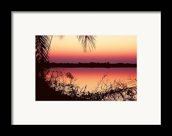 River Framed Print featuring the photograph Sunrise On The Okavango Delta by Stefan Carpenter