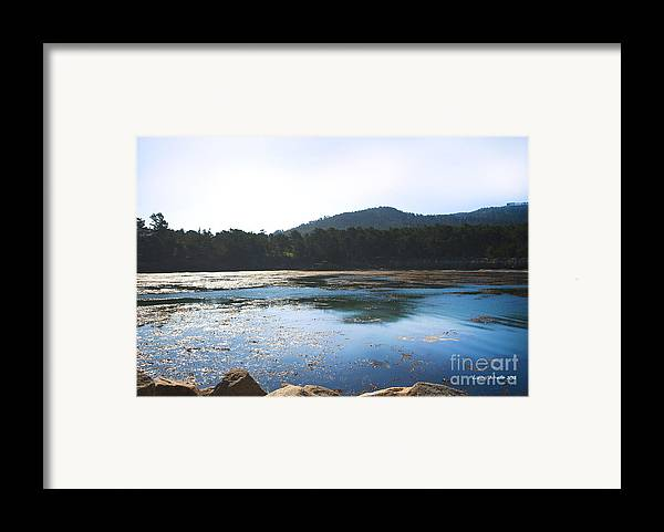 State Beach Near Big Sur Framed Print featuring the photograph Sunrise Over Whaler's Cove At Point Lobos California by Artist and Photographer Laura Wrede