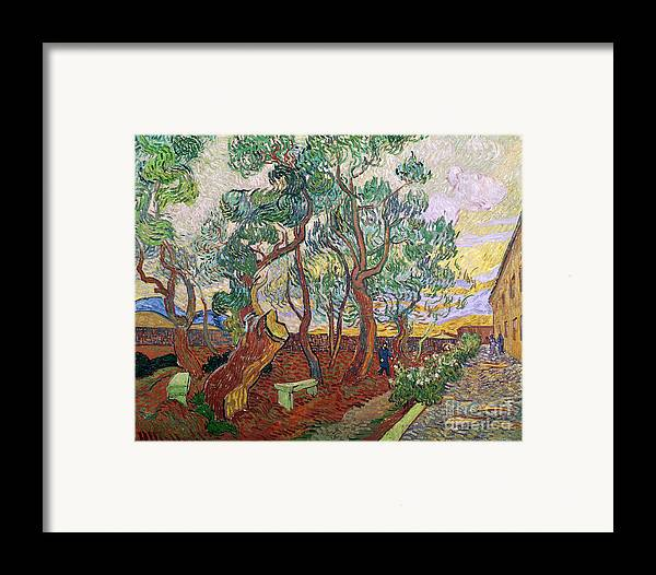 Tree Framed Print featuring the painting The Garden Of St Pauls Hospital At St. Remy by Vincent Van Gogh