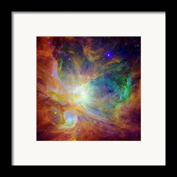 Universe Framed Print featuring the photograph The Hatchery by The Vault - Jennifer Rondinelli Reilly