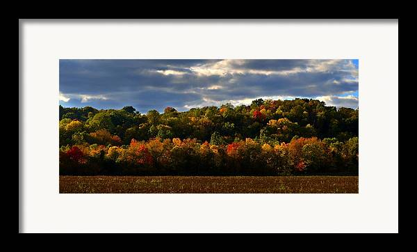Autumn Framed Print featuring the photograph The Layers Of Autumn by Julie Dant