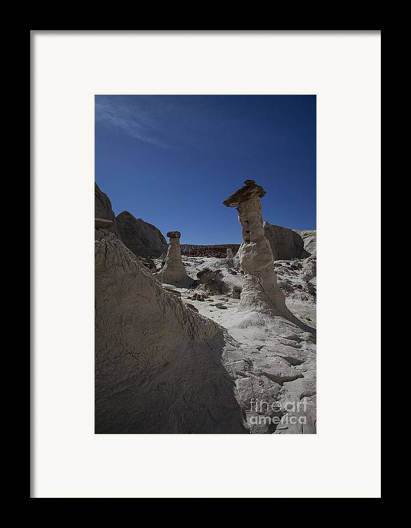 Toadstools Framed Print featuring the photograph The Toadstools by Timothy Johnson