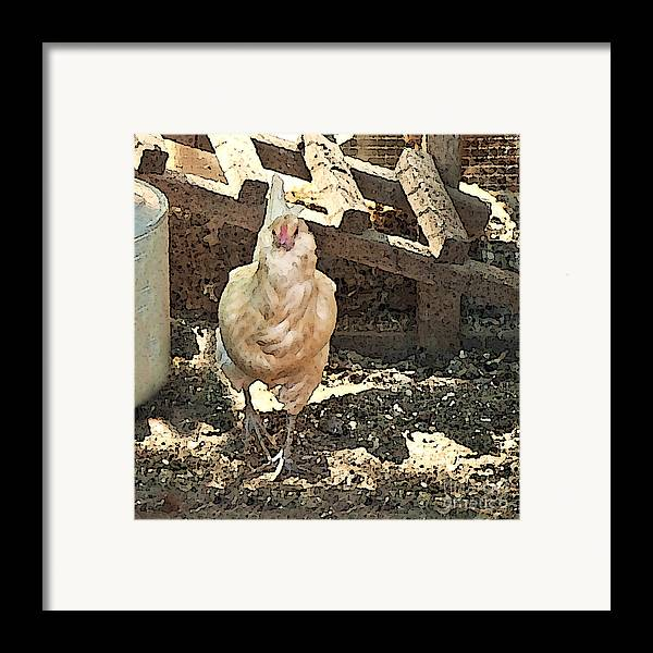 Rooster Art Framed Print featuring the painting There's A Chicken In The Hen House by Artist and Photographer Laura Wrede