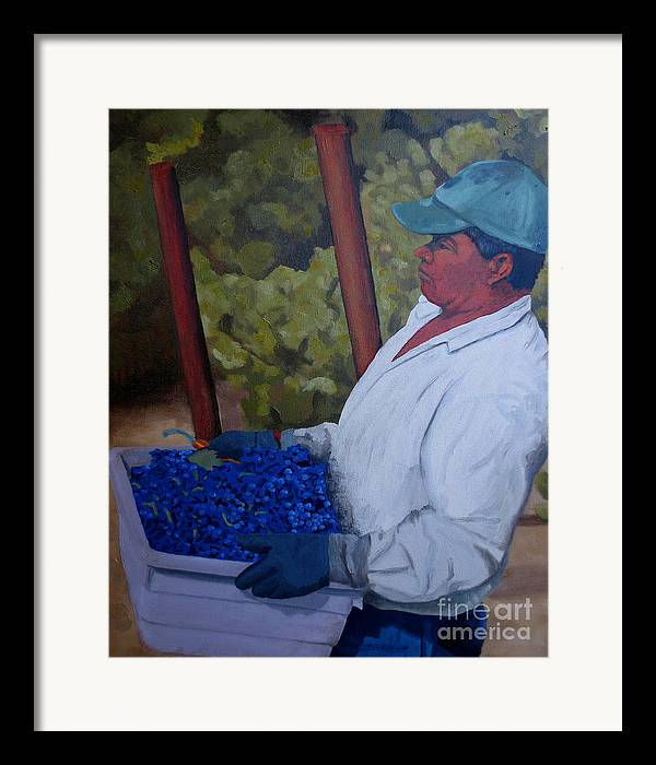 Vineyard Framed Print featuring the painting Vineyard Harvest IIi by Donna Schaffer