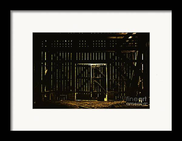 Barn Framed Print featuring the photograph Walking Dead by Andrew Paranavitana