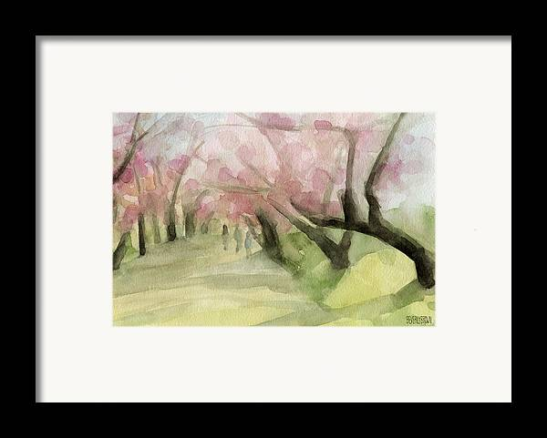 Cherry Blossoms Framed Print featuring the painting Watercolor Painting Of Cherry Blossom Trees In Central Park Nyc by Beverly Brown Prints