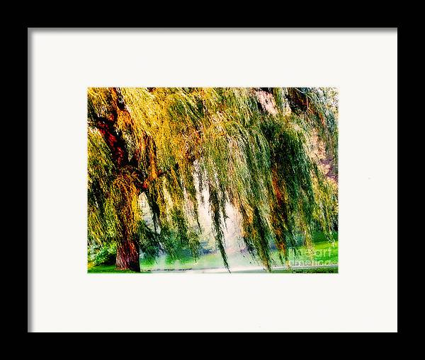 Weeping Willow Tree Framed Print featuring the photograph Weeping Willow Tree Painterly Monet Impressionist Dreams by Carol F Austin