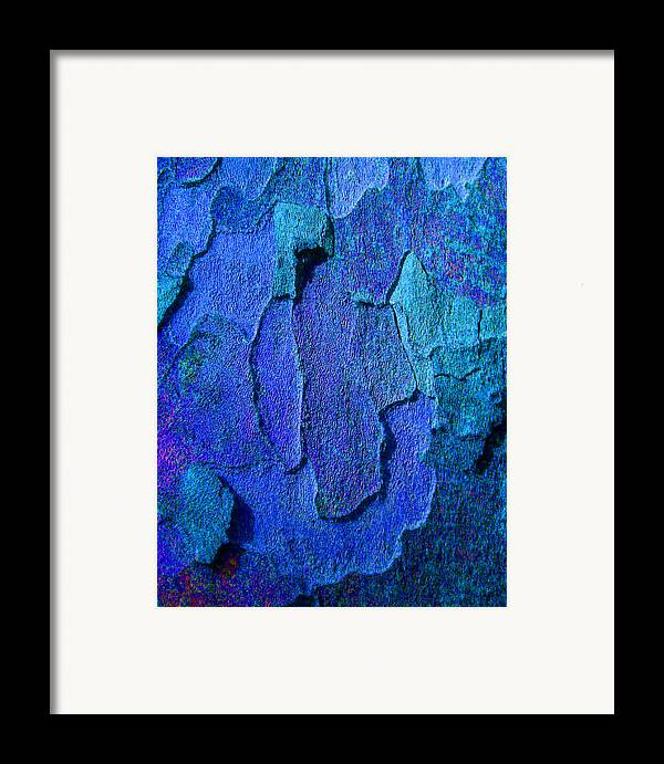 Bark Framed Print featuring the photograph Winter London Plane Tree Abstract 4 by Margaret Saheed