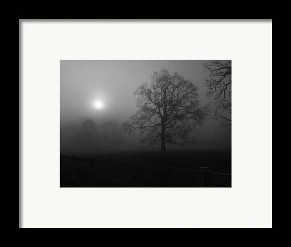 Landscape Framed Print featuring the photograph Winter Oak In Fog by Deborah Smith