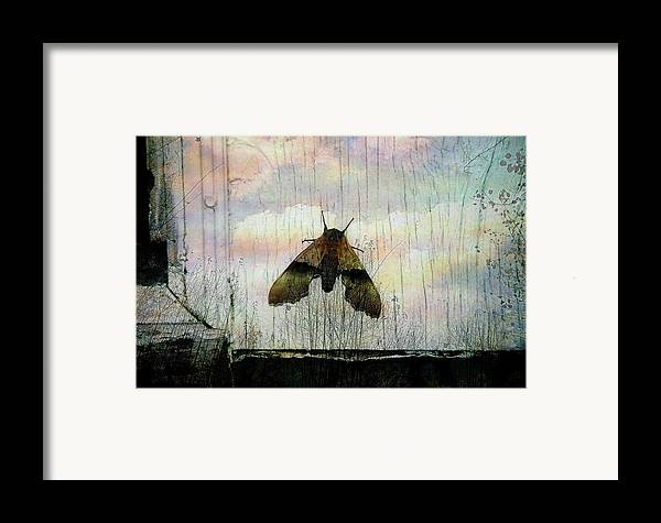Surreal Framed Print featuring the photograph Just Arrived by Shirley Sirois