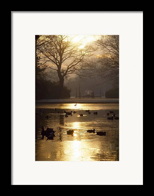 Back Lit Framed Print featuring the photograph Saint Stephens Green, Dublin, Co by The Irish Image Collection