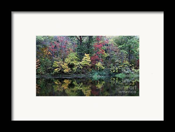Nature Framed Print featuring the photograph Sugar Ridge State Fish And Wildlife Area by Jack R Brock