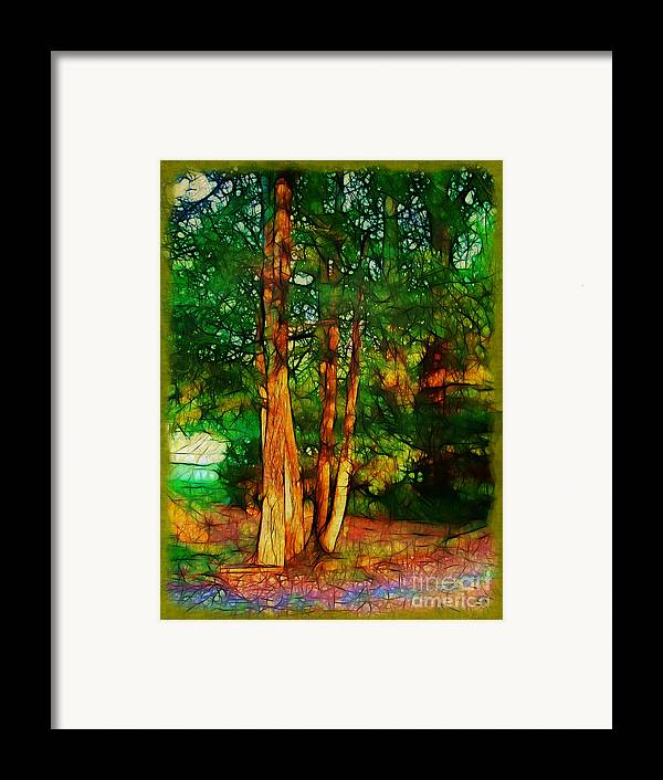 Trees Framed Print featuring the photograph Afternoon Delight by Judi Bagwell
