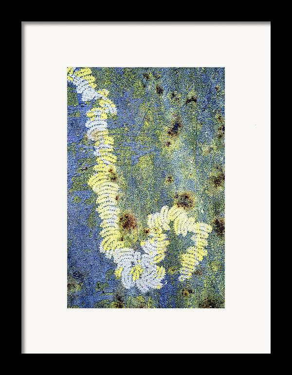 Alga Framed Print featuring the photograph Algae by Dr Keith Wheeler