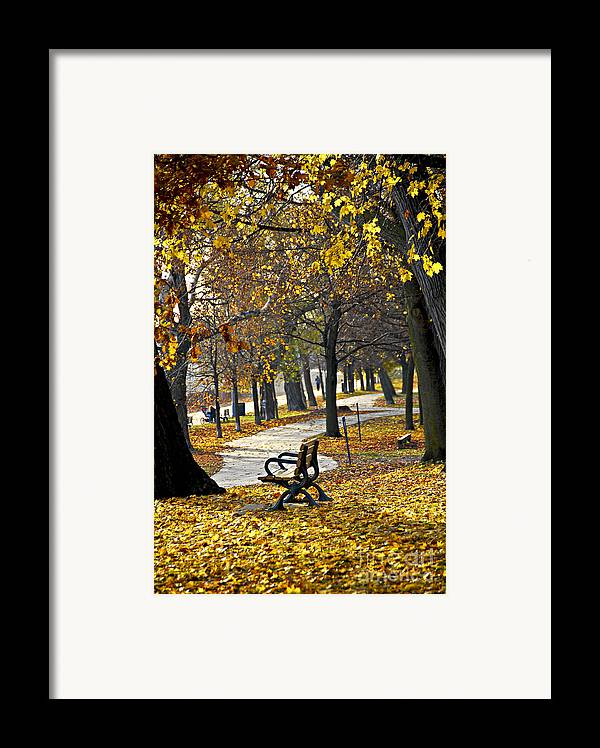 Park Framed Print featuring the photograph Autumn Park In Toronto by Elena Elisseeva