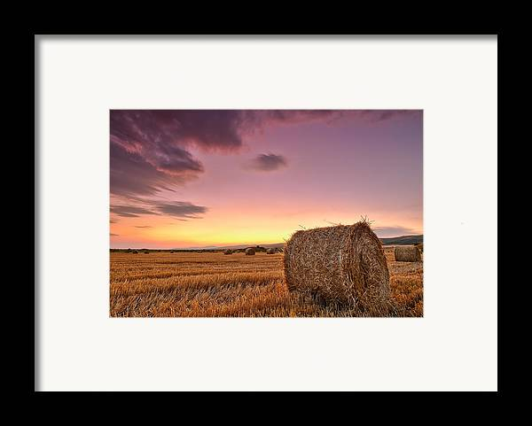 Bulgaria Framed Print featuring the photograph Bales At Twilight by Evgeni Dinev