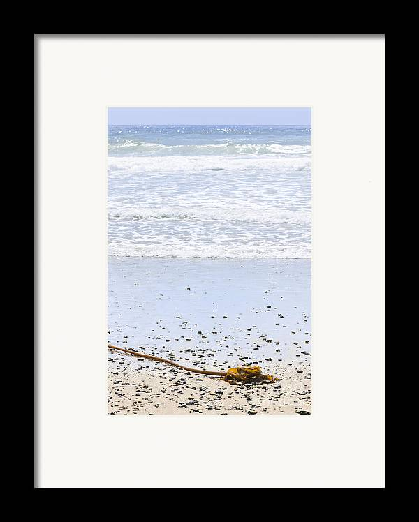 Pacific Framed Print featuring the photograph Beach Detail On Pacific Ocean Coast by Elena Elisseeva