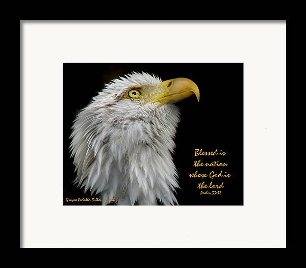 Eagle Framed Print featuring the photograph Blessed Is The Nation by Grace Dillon