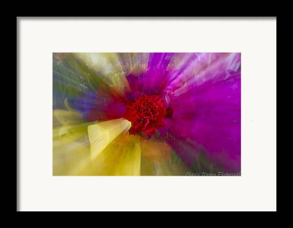 Flower Framed Print featuring the photograph Bloom Zoom2 by Charles Warren