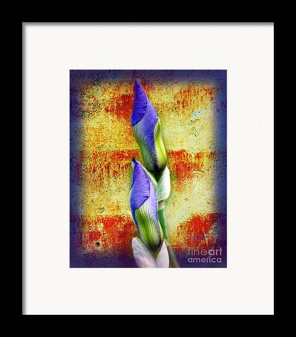 Purple. Iris. Buds Framed Print featuring the photograph Buddies by Andee Design