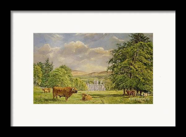 Landscape; Highland Cattle; Angus; Cow; Royal Residence;scottish Baronial; Horn; Horns Park; Bulls; Bull; Balmoral Castle; Balmoral; Hill; Hills; Tree; Trees; Grass; Green; Scottish Framed Print featuring the painting Bulls At Balmoral by Tim Scott Bolton