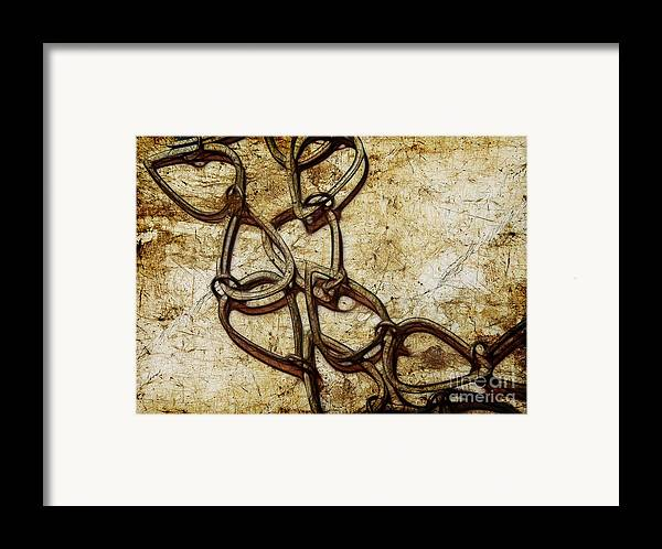 Chain Framed Print featuring the photograph Chain Links by Judi Bagwell