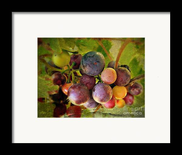 Wine Framed Print featuring the photograph Colors Of Wine by Kevin Moore