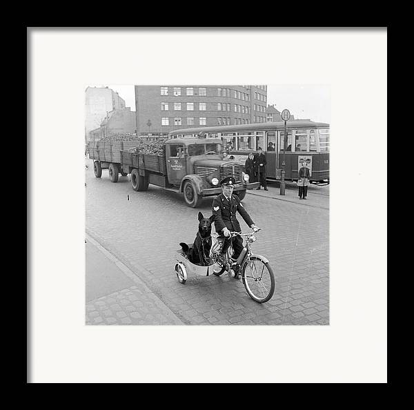 Mid Adult Framed Print featuring the photograph Contented Police Dog by Hans Meyer