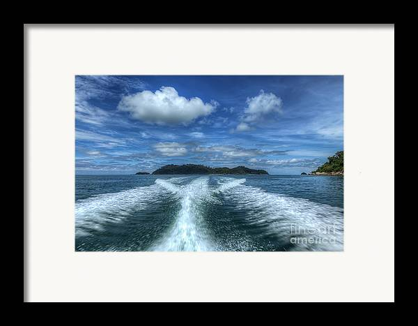 Tropical Framed Print featuring the photograph Cruising by Adrian Evans