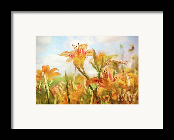 Art Framed Print featuring the photograph Digital Painting Of Orange Daylilies by Sandra Cunningham