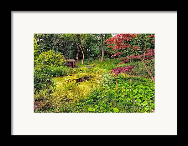 Countryside Framed Print featuring the photograph English Garden by Adrian Evans