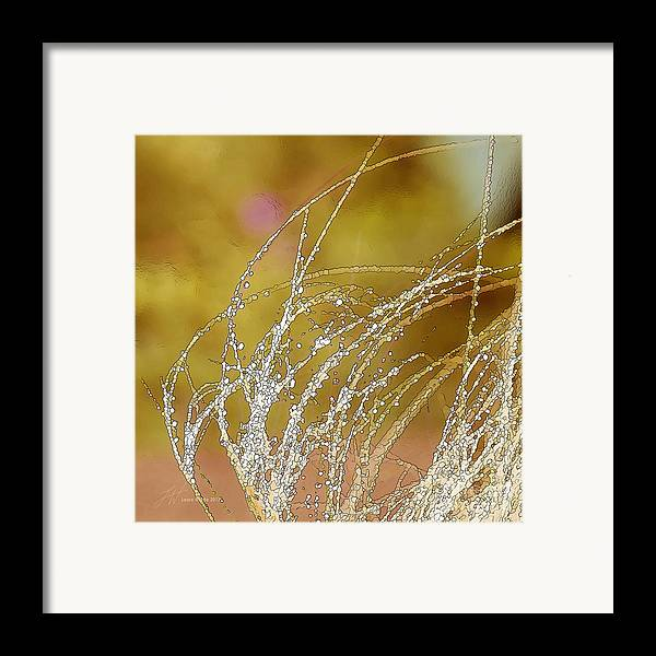 Grass Framed Print featuring the painting Fall Grass by Artist and Photographer Laura Wrede