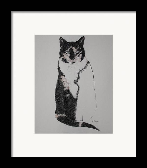 Spirit Cat Essence Framed Print featuring the drawing Friend II by Patsy Sharpe