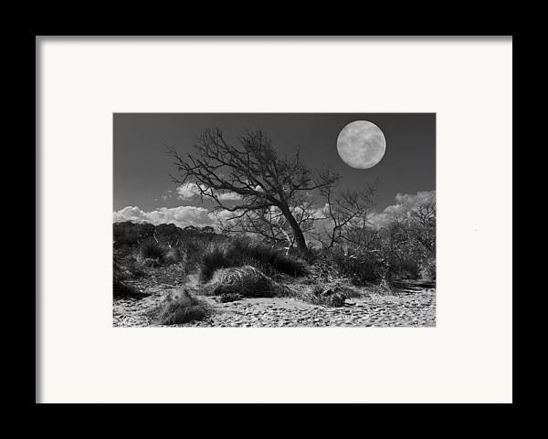 Fine Framed Print featuring the photograph Full Moon Over Jekyll by Debra and Dave Vanderlaan