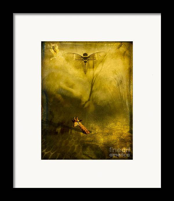 Giraffe Framed Print featuring the photograph Giraffe And The Heart Of Darkness by Paul Grand