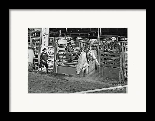 Bull Riding Framed Print featuring the photograph Going For 8 by Shawn Naranjo