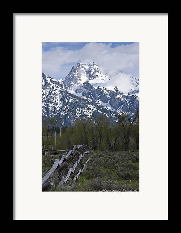 Grand Tetons Framed Print featuring the photograph Grand Teton Fence by Charles Warren