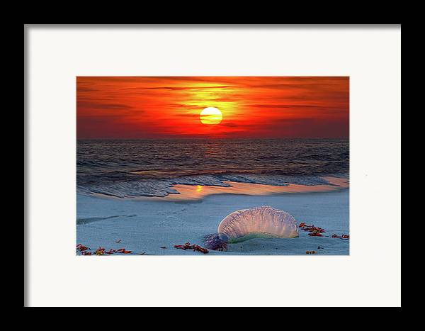 There Is Never A Bad Sunset On This Gulf Of Mexico Beach Framed Print featuring the photograph Grayton Beach Sunset IIi by Charles Warren