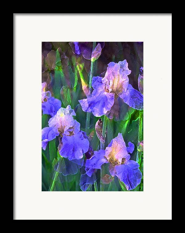 Floral Framed Print featuring the photograph Iris 51 by Pamela Cooper