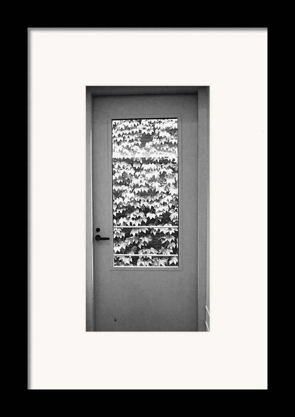 Ivy Framed Print featuring the photograph Ivy Door by Anna Villarreal Garbis