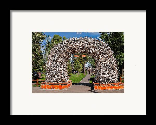 Haybales Framed Print featuring the photograph Jackson Hole by Robert Bales
