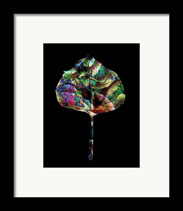 Leaf Framed Print featuring the photograph Jewel Tone Leaf by Ann Powell