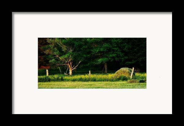 Haybale Framed Print featuring the photograph Late Summer's Eve by Mary Frances