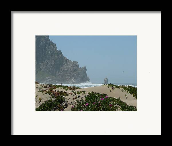 Ocean Framed Print featuring the photograph Life - Is Everywhere by From Gods Porch Photography