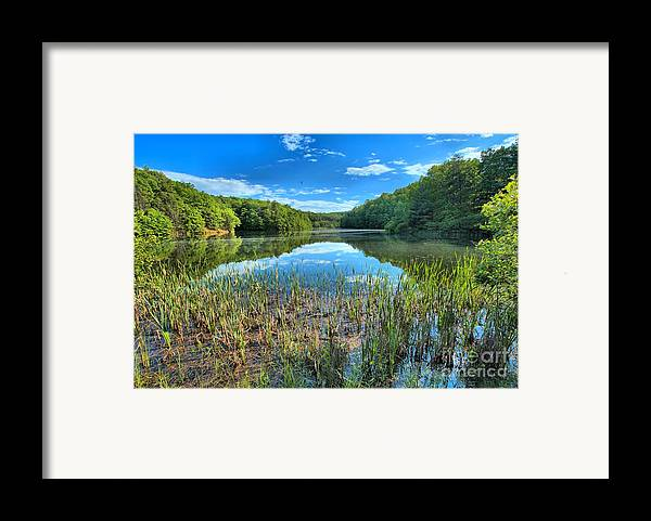 Long Branch Lake Framed Print featuring the photograph Long Branch Marsh by Adam Jewell