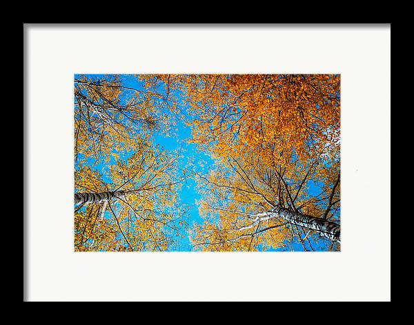 Autumn Framed Print featuring the photograph Meet In Heaven. Autumn Glory by Jenny Rainbow