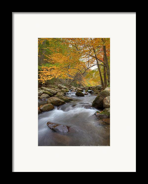 Great Smoky Mountains Framed Print featuring the photograph Mid Stream II by Charles Warren